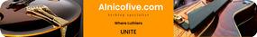 Alnicofive.com